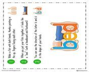 letter, color, reversal, resources, d, teaching, b, hands, bd, using