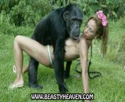 with, monky, fuck, animal, video, sex, downlod, monkey, girl